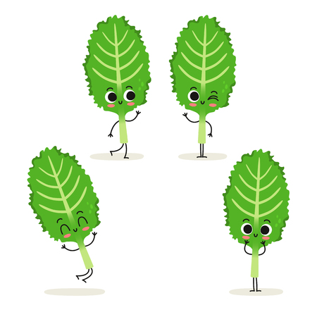 Kale. Cute cartoon vegan protein food vector character set isolated on white