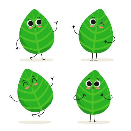 Basil. Cute herb vector character set isolated on white