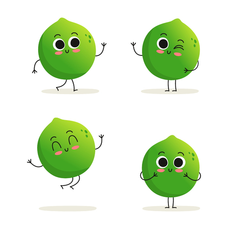 Lime. Cute exotic citrus fruit vector character set isolated on white