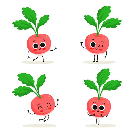 Radish. Cute vegetable vector character set isolated on white