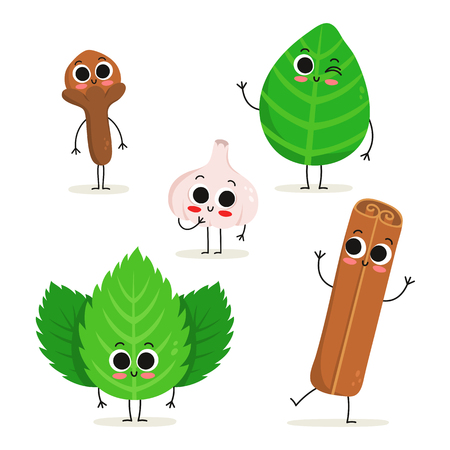 Adorable collection of five cartoon herbs & spices characters isolated on white: clove, basil, garlic, mint and cinnamon
