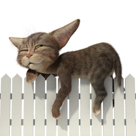 3d illustration sleeping cat. Isolated white background Standard-Bild