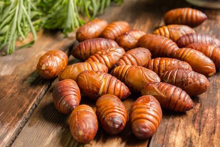 cicada bug: Gourmet cocoon the pupa