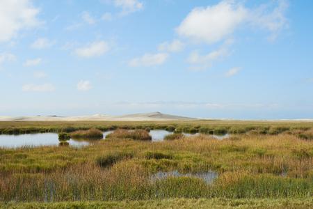 Grassland by the Qinghai Lake Stock Photo