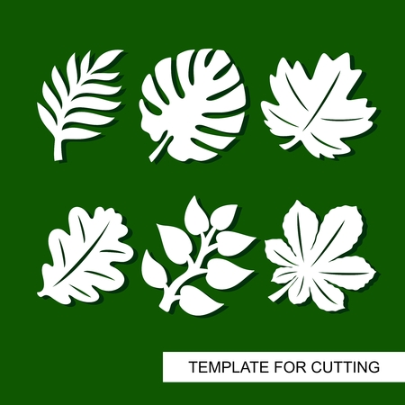 Plants theme. Silhouettes of tropical palm leaves, monstera, jungle leaves, leaves maple, oak, chestnut. Template for laser cut, wood carving, paper cutting and printing. Vector illustration. Çizim