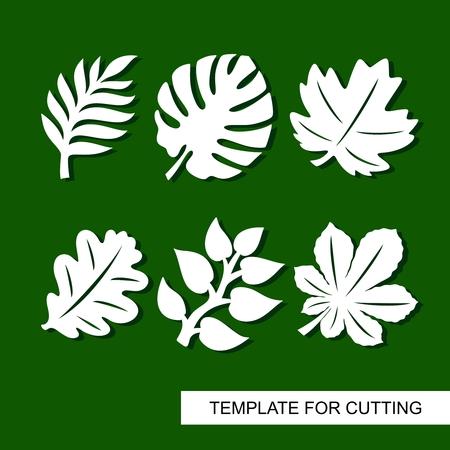 Tema de plantas. Siluetas de hojas de palmeras tropicales, monstera, hojas de selva, hojas de arce, roble, castaño. Plantilla para corte láser, tallado en madera, corte e impresión de papel. Ilustración de vector. Foto de archivo - 102529187