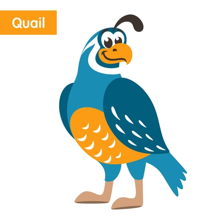 Blue quail with a yellow beak on a white background. Cartoon colorful character for children. Isolated object. Flat style. Vector illustration.