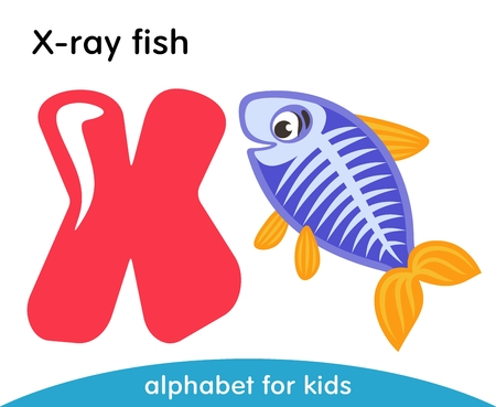 Pink letter X and violet X-ray fish with yellow fins. English alphabet with animals. Cartoon characters isolated on white background. Flat design. Zoo theme. Colorful vector illustration for kids.