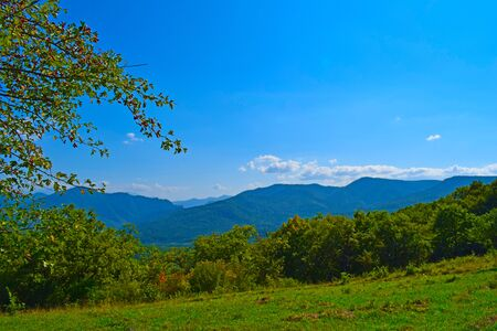 Green mountains and blue sky. Beautiful summer landscape with multilayered hills and forest. Rosehip branches in the foreground. Horizontal photo. Main Caucasian ridge, Adygea, Russia.