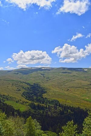 Beautiful hills, meadows and green pines. Blue sky and white clouds. Summer landscape, sunny day. Vertical photo. Plateau Lago-Naki, Adygea.