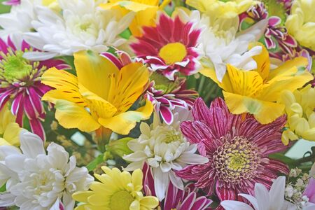 Floral background of various flowers: yellow peruvian lily (alstroemeria), pink, red and white daisies, gerberas, chrysanthemums. Bright multi-colored festive bouquet for mother's day or birthday.
