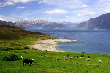 peaceful farmland photo