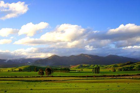 rural sunset new zealand photo