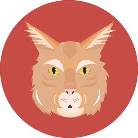 Ginger cat maine coon on a red circle background Illustration