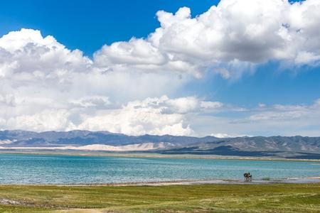 China Qinghai Lake beauty scenery. 免版税图像