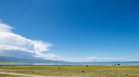 China Qinghai Lake beauty scenery