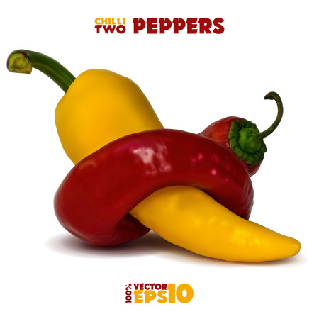 Two hot chili peppers. Red pepper wraps around a yellow pepper. On a white background. Illustration
