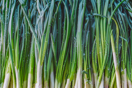 background texture of green onions with water drops, on the counter of the market