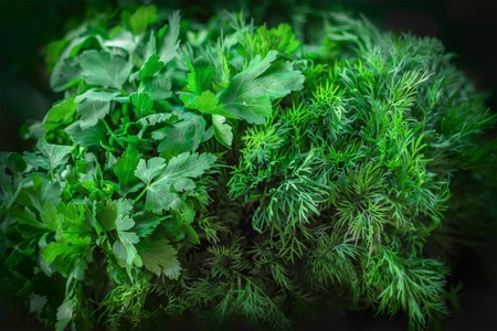 background texture of green dill and parsley, on the market counter