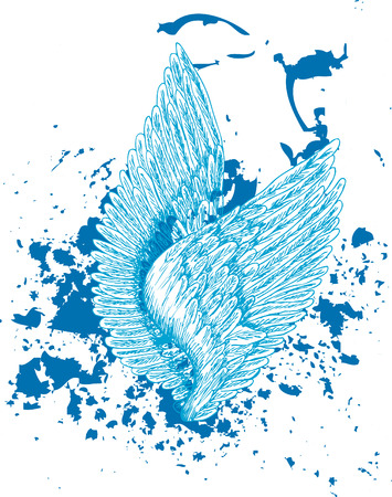 an abstract of bird wings