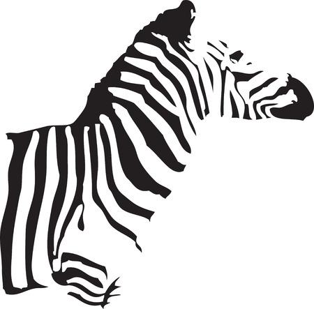a silhouette of a half body of a zebra