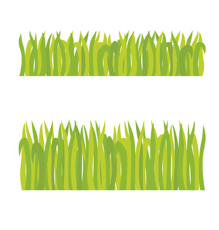 mowers: Short grass and long grass in the field.