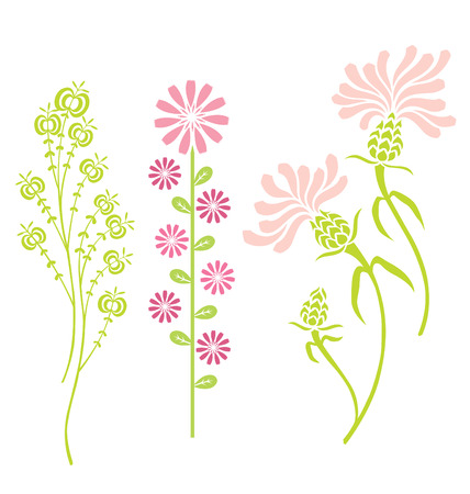 Variety of flowers. Vector