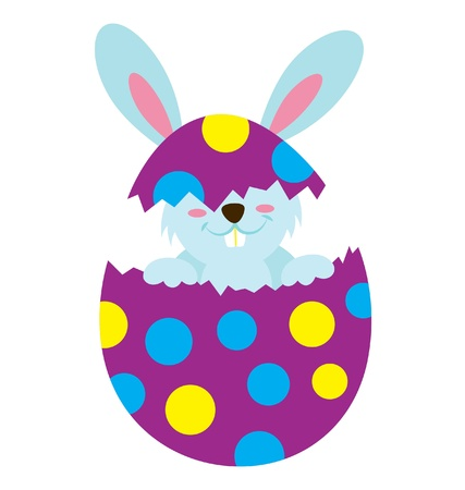 face covered: A little cute bunny sitting inside a cracked Easter egg with half of the face covered with egg shell.