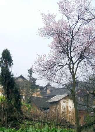 Ancient Sichuan Shudao the small village. Stock Photo - 4830668