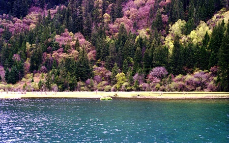 Jiuzhaigou scenery Stock Photo