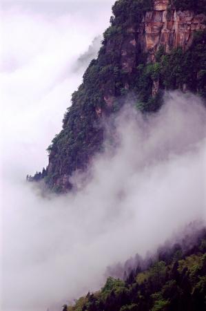 niyama: Niyama scenery