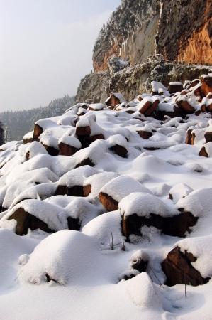 snow break: Early spring snow