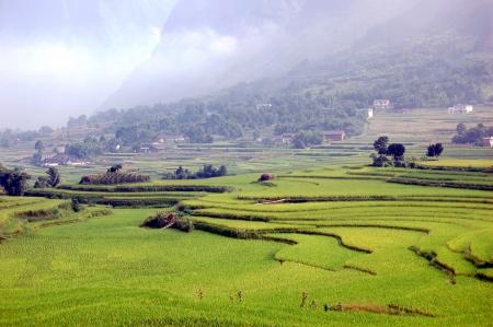xuyong: Rural natural scenery
