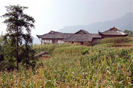 distant spot: Rural temple