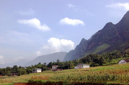 Rural natural scenery