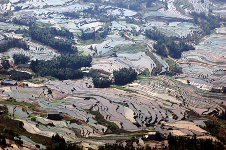Sichuan danehill terraces Stock Photo