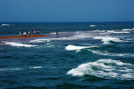 turismo ecologico: Naturaleza Vista paisaje en el lado de la playa