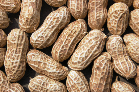 catsup: Close up to groundnuts