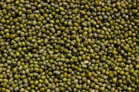 Close up to mung bean