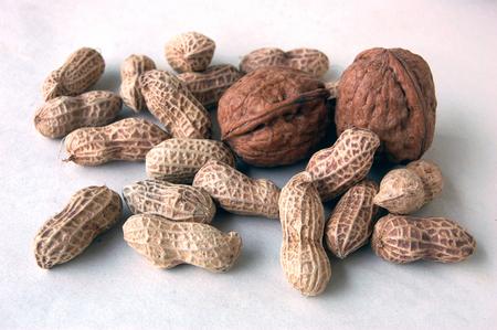 arboles frutales: Nueces y cacahuetes Foto de archivo