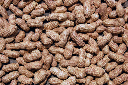 south sichuan: peanut Stock Photo