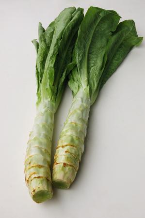 south sichuan: Lettuce