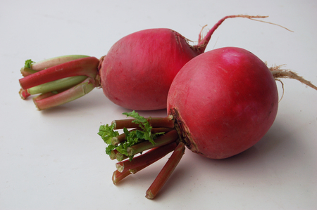 spheric: radish