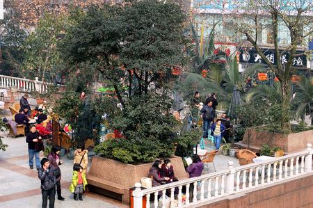 overwhelming: Sichuan open air tea garden