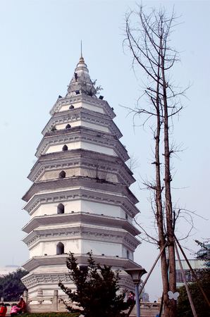 south sichuan: China ancient towers