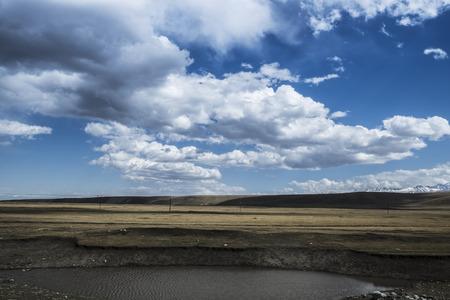 xinjiang: Bayanbulak, Xinjiang grassland