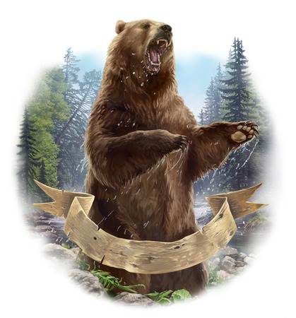 積極的なクマ 写真素材