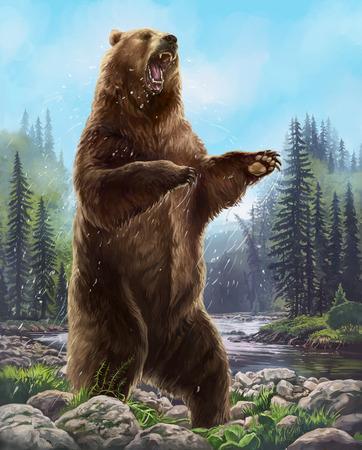 積極的なクマ。 写真素材