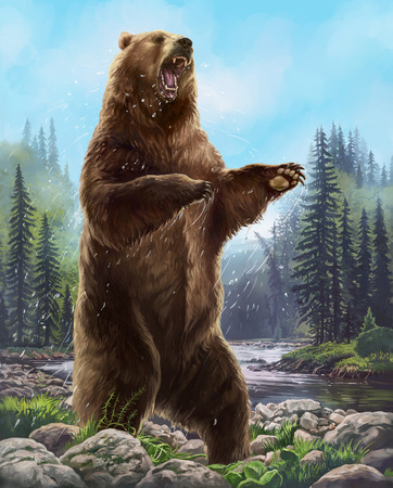 적극적인 곰.