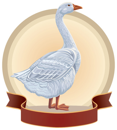 hissing: Graphical goose in frame. Illustration